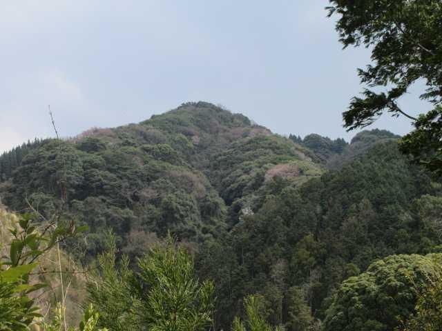 IMG0059JPG弓張岳