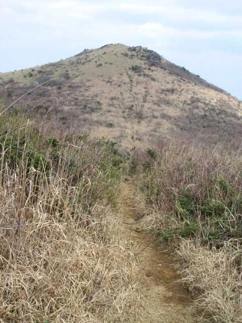 IMG0054JPG福智山が見え出した