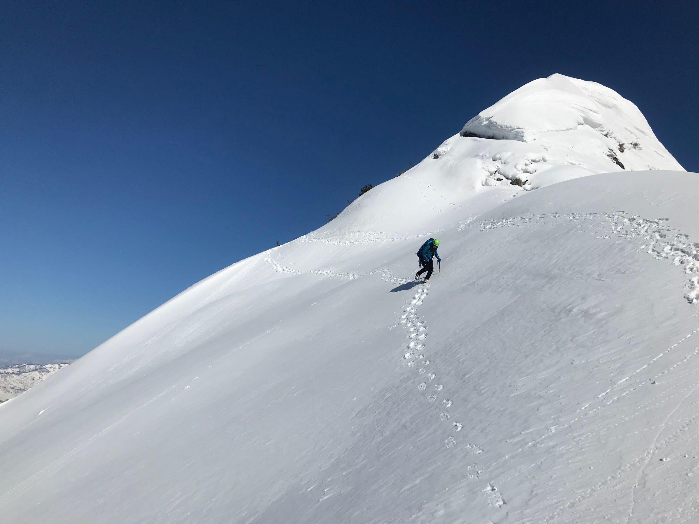 8足拍子岳のピークから南尾根へ下降