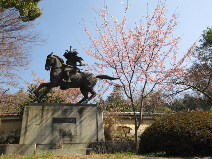 190326観心寺 (1)