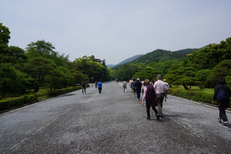 6道 (1200x800)