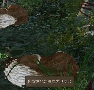 ScreenShot0160.jpg