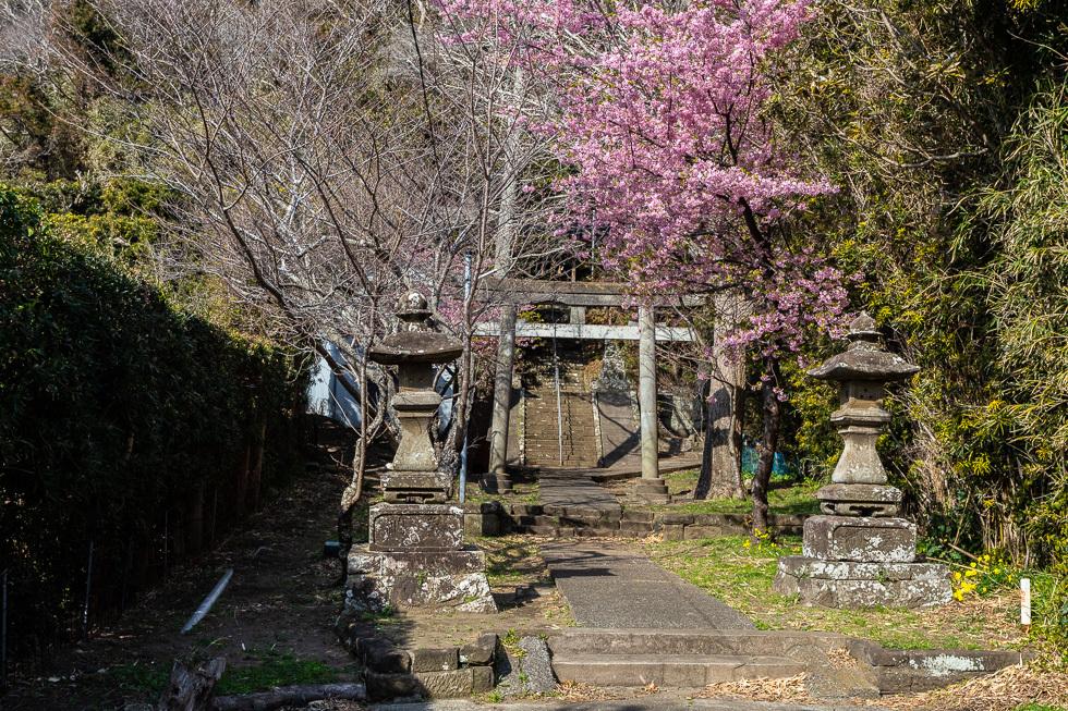 190224和田町980-4241