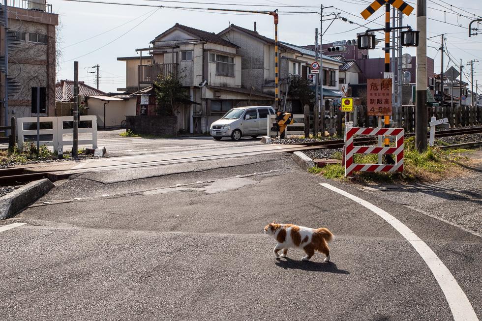 190224和田町980-4266