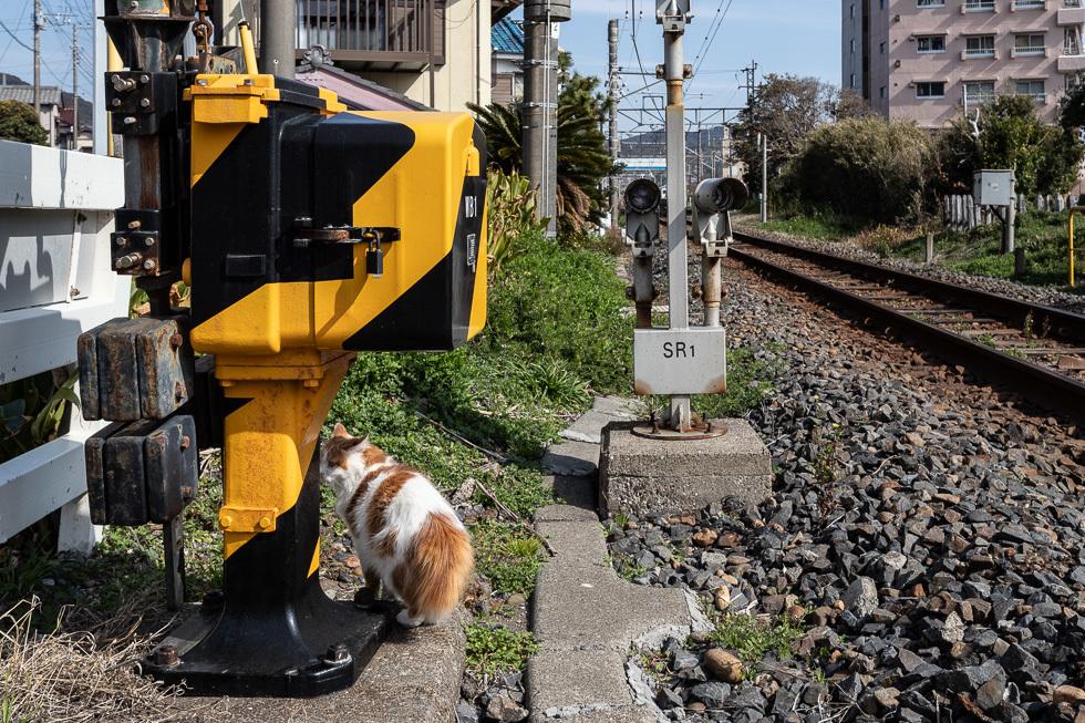 190224和田町980-4269