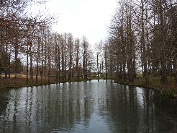 20190323 水戸植物公園2