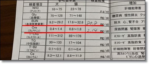 407 (23)