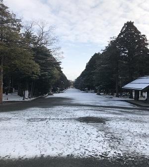 神宮 参道2019.3.15