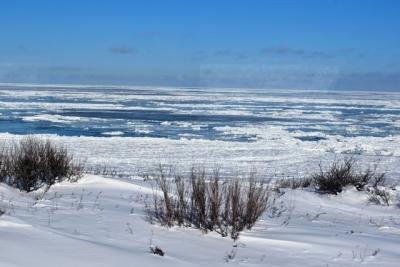 流氷が接岸