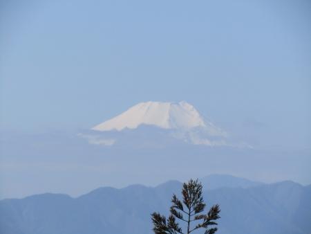 190302景信山~高尾山 (6)富士山s