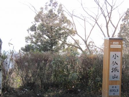 190302景信山~高尾山 (11)s
