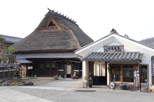 20190305 梅 岡村酒造 (1)
