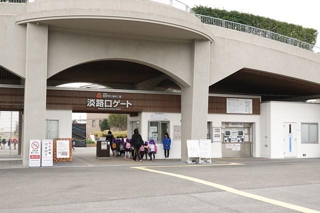 20190306 明石海峡公園 河津桜 (5)