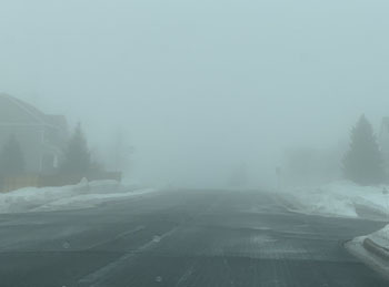 fog03141903.jpg