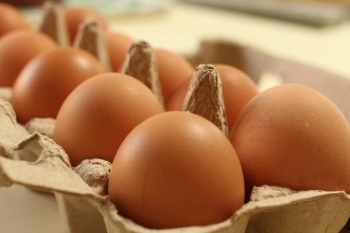 egg7867.jpg