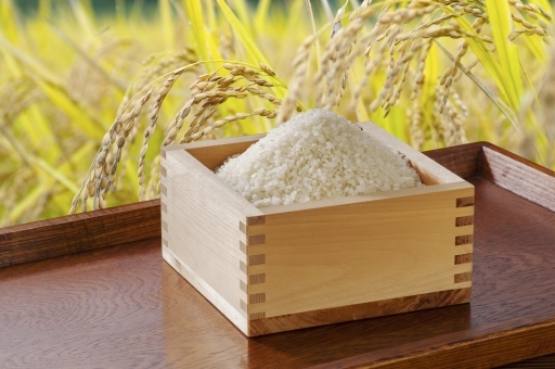 rice6876.jpg