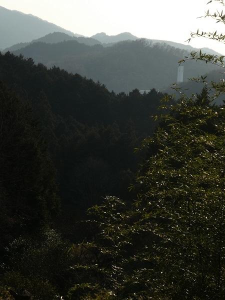 墓から見える山々