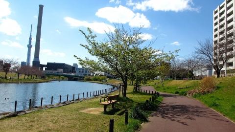 墨田区立 旧中川水辺公園
