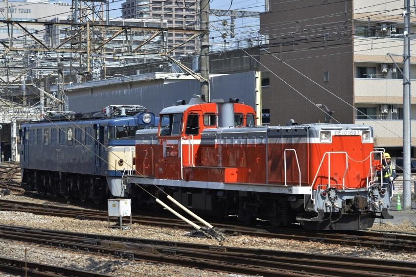 _DSC1335.jpg