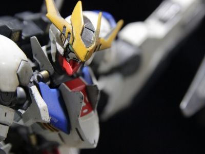 barbatos lupus rex_190210s159