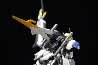 barbatos lupus rex_190210s028