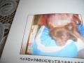DSCN6771.jpg