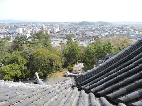 19甲賀伊賀14上野城