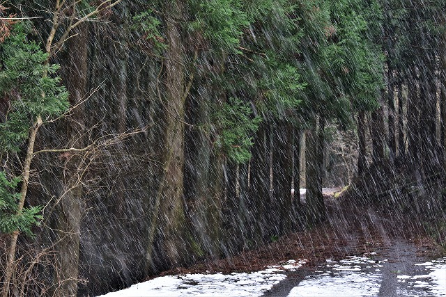 雪あられ1