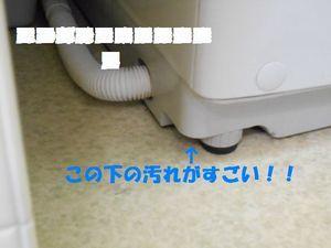 dscn0249_2.jpg