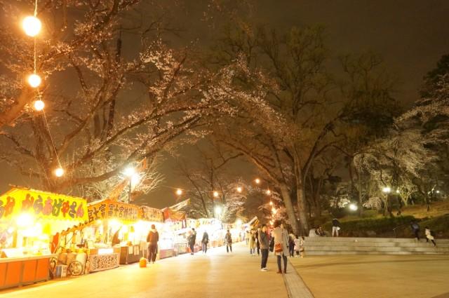八王子 富士森公園の夜桜