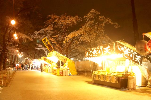 八王子の富士森公園の夜桜