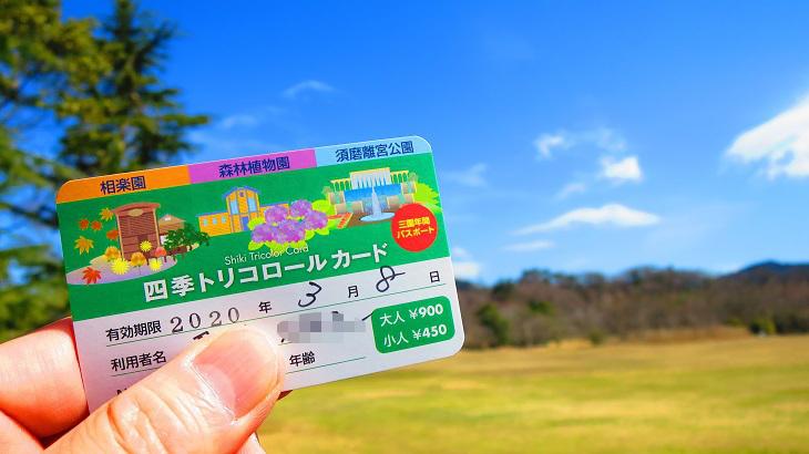 IMG_6666トリコロールカード