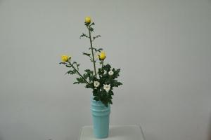 瓶花 直立型32