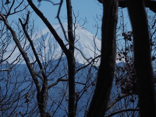 兜岩からの富士