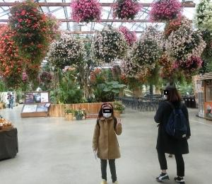神戸どうぶつ施設11