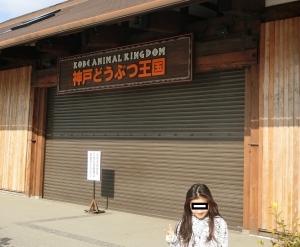 神戸どうぶつ後1