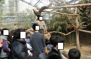 神戸動物イベ4