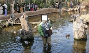 神戸動物イベ16