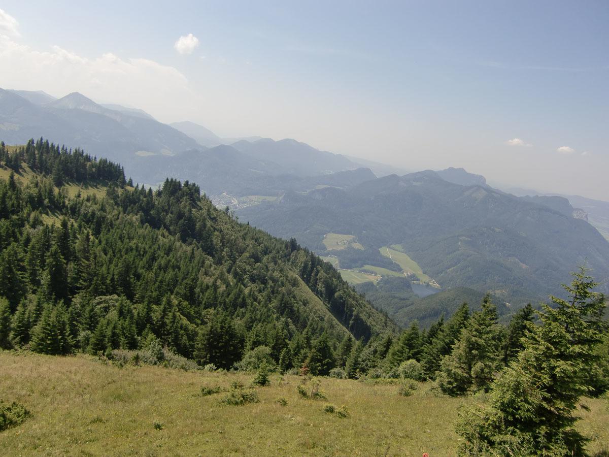 2010121108.jpg