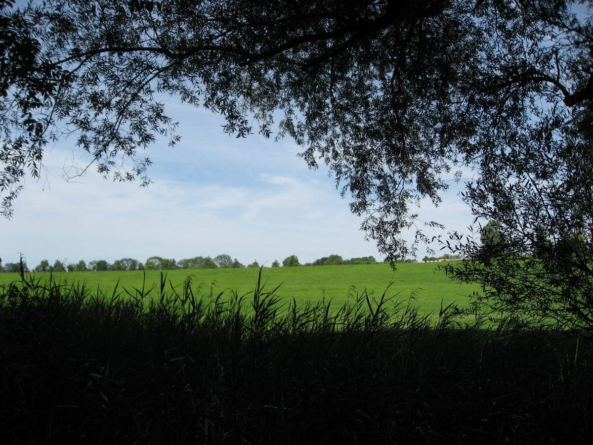 2010121807.jpg