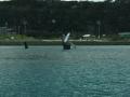 座間味島のイルカの像