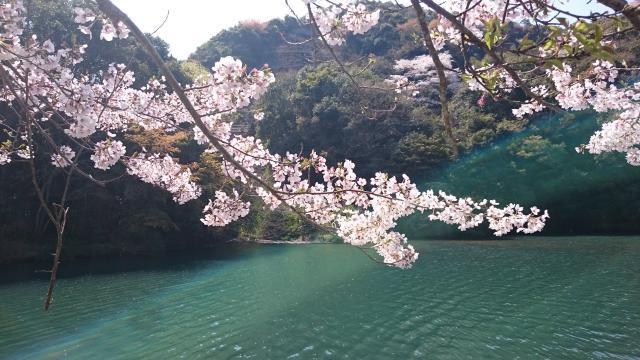 亀川ダム2019