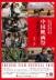 中国映画祭