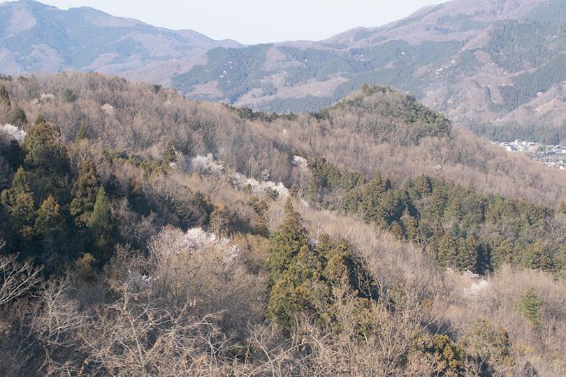 山0H7A0318