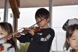 バイオリン (19)