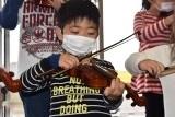 バイオリン (28)