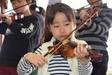 バイオリン (30)