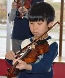 バイオリン (40)
