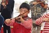 バイオリン (41)