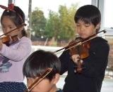バイオリン (42)